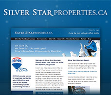 Silver Star Properties
