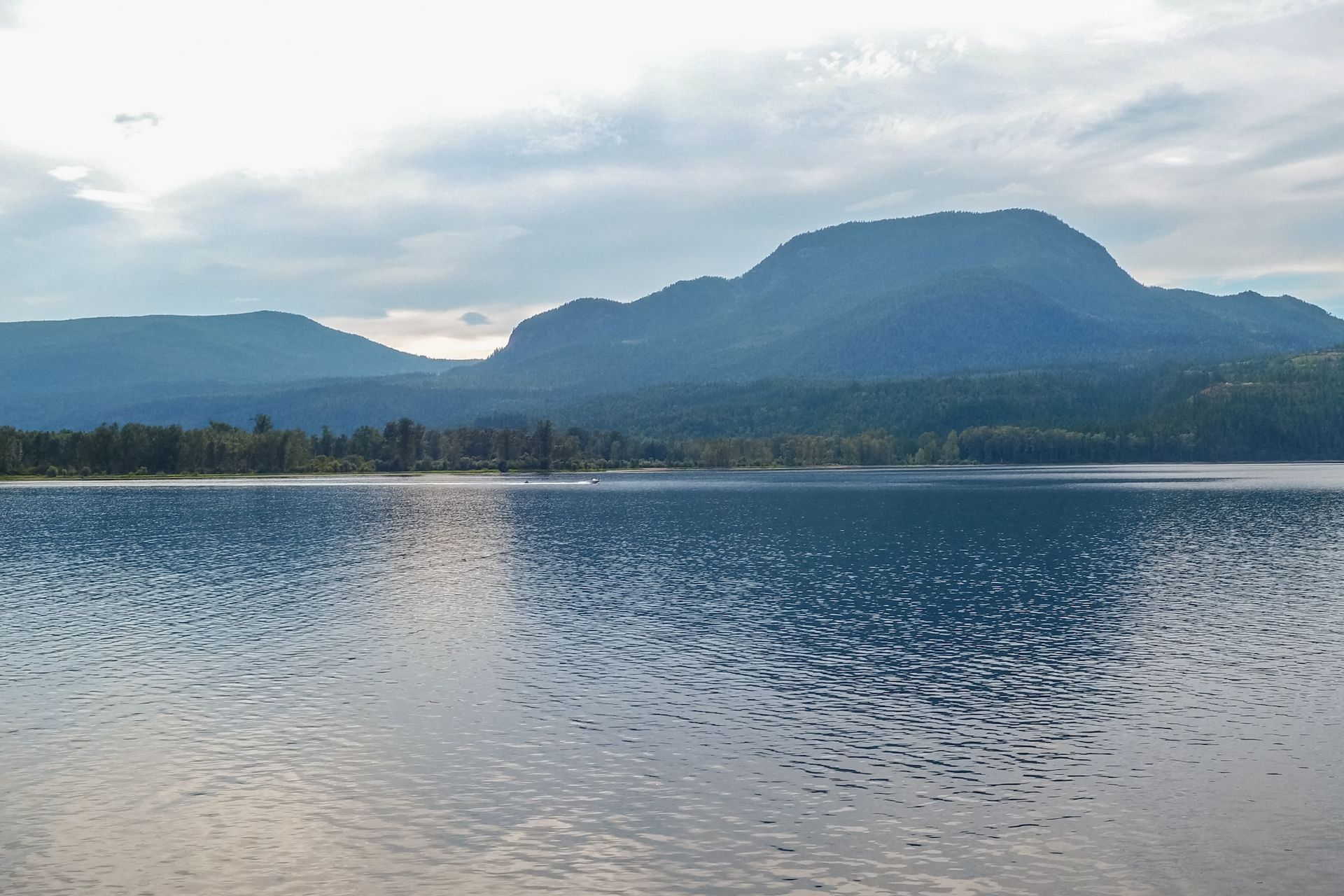 Mabel Lake Road Property For Sale