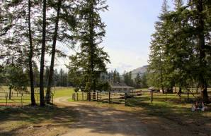 4858 Salmon River Road, Armstrong, BC