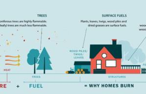Be Fire Smart As A Homeowner